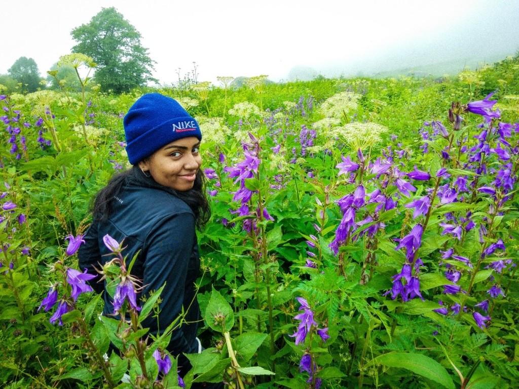 Valley of flower trek